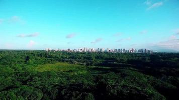 imagens aéreas da floresta e da cidade ao fundo
