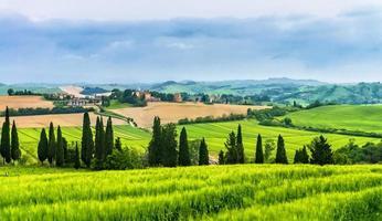 Farmland on curvy hills in Tuscany photo
