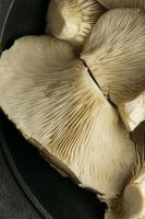 Top view mushrooms close up