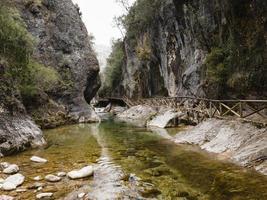 Scenic view of creek photo