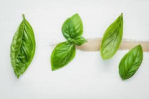 Hojas de albahaca verde dulce fresca sobre fondo blanco de madera en mal estado foto