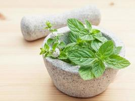 Close-up fresh peppermint leaves in white mortar with pestle on bamboo cutting board photo