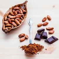 Roasted cocoa beans and dark chocolate setup on wooden background photo