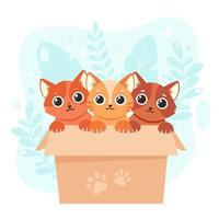Adopt a pet. Cute kittens in the box. Vector illustration in flat style.