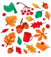 elementos de otoño bellotas, taza de café, hojas de otoño, serba, viburnum, bufanda, pastel de calabaza. ilustración vectorial. vector
