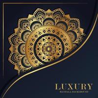 Luxury mandala round ornament pattern background vector