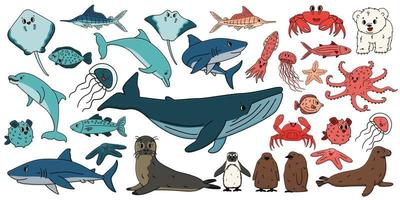 Big set of vector cartoon outline isolated sea ocean north animals. Doodle whale, dolphin, shark, stingray, jellyfish, fish, stars, crab, king Penguin chick, octopus, fur seal, polar bear cub for book