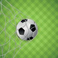 Soccer ball in a net of soccer gates on the background of a green lawn - Vector