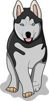 flat husky perfect for design project vector