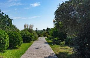Brick sidewalk and trees with a cloudy blue sky at the Park of Southern Cultures in Sochi, Russia photo