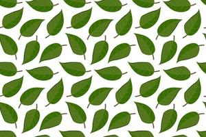Tropical background with leaves. Leaf repeated background. Vector illustration seamless pattern. Modern exotic abstract design.