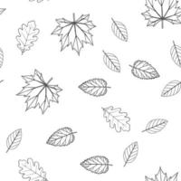 Seamless pattern with leaves in line style. Maple, oak, birch, alder leaves. Plants of the middle zone. Vector isolated on white background.