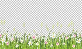 Spring grass and flowers border, Easter greeting card decoration element, illustration isolated on transparent background vector
