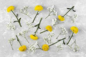Flat lay flowers collection on white background photo