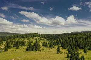 Aerial view at mountain forest on a summer day photo