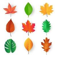 colorful leaves vector design