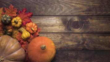 composición de calabazas maduras hojas de otoño foto