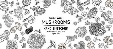 Mushrooms products. Vector illustration.