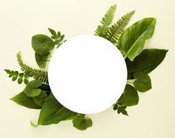 surtido plano de hojas con espacio de copia foto