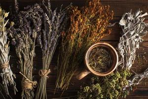Flat lay cup of herbal tea with plants