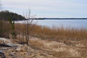 la costa del mar Báltico en Finlandia en la primavera en un día soleado. foto