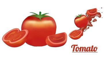 A tomato vector