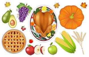thanksgiving celebration traditional food and fruit set vector