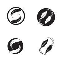 feather logo symbol vector template