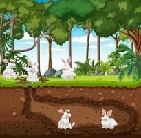 Madriguera subterránea de animales con familia de conejos. vector