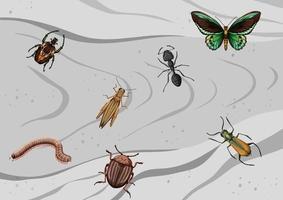 vista superior de diferentes tipos de insectos. vector