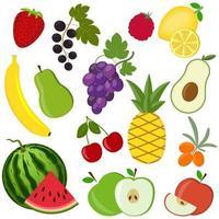 Conjunto de frutas y bayas aislado sobre un fondo blanco. vector