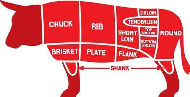 beef cuts chart vector