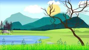 planície verde e a velha árvore na primavera