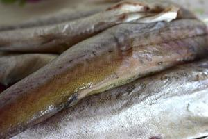 Freshly cleaned fish pollock sirloin meat photo