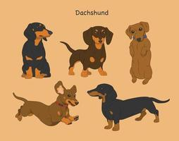 Cute dachshund character. hand drawn style vector design illustrations.
