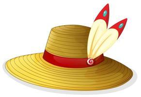 un sombrero marrón foto