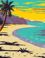 Tronco de la playa de la bahía ubicada dentro del parque nacional de las islas vírgenes en la isla de san juan en el mar caribe wpa poster art vector