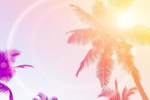 Tropical palm coconut trees on sunset sky flare and bokeh nature background. photo