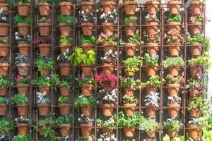 Muro de varias plantas de diferentes colores en macetas. foto
