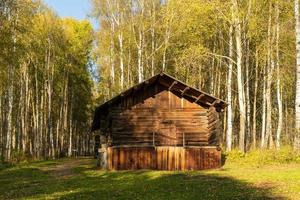 Cabin in a forest of birch trees in Taltsy, Russia photo