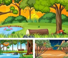 Set of different forest horizontal scenes vector