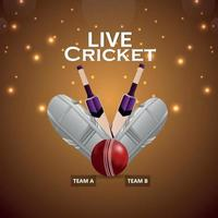 Cricket championship match with creative cricket equipment vector