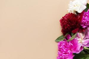 Peony flowers with copy space photo