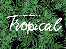 Green tropical leaves pattern banner vector