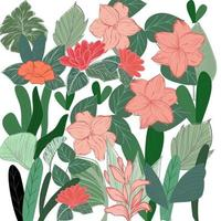 Summer Tropical flower and green leaves vector