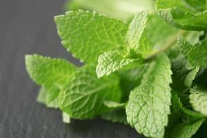 Gavilla de hojas de menta verde sobre fondo gris foto