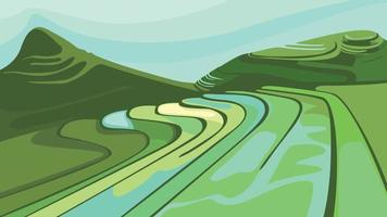 Landscape with paddy fields. vector