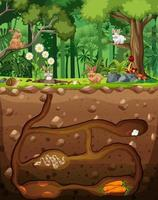 Underground animal burrow with animals in the forest vector