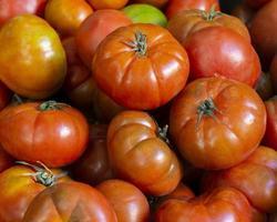 Arrangement with fresh tomatoes photo