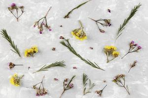 Top view flowers collection on table photo